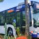 PaderSprinter-Bus in den Sommerferien